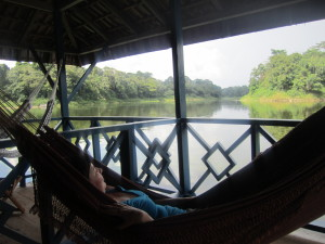 mel hammock